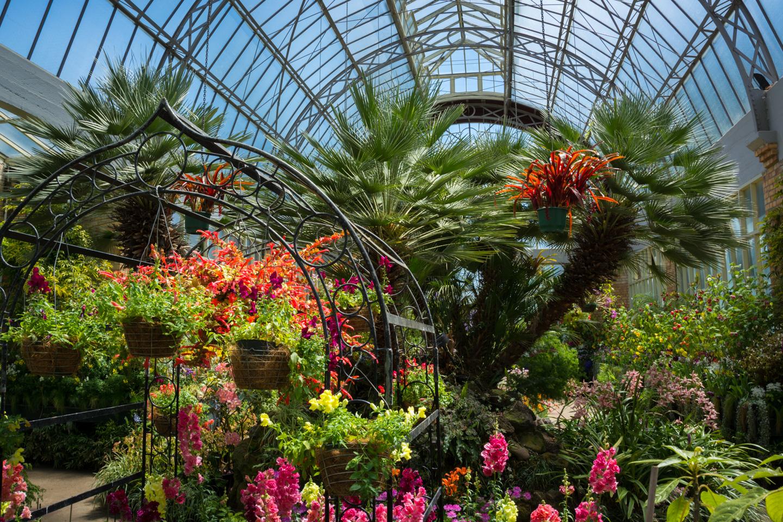 Auckland – Domain Winter Garden