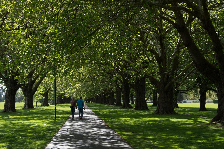 Christchurch – Hagley Park