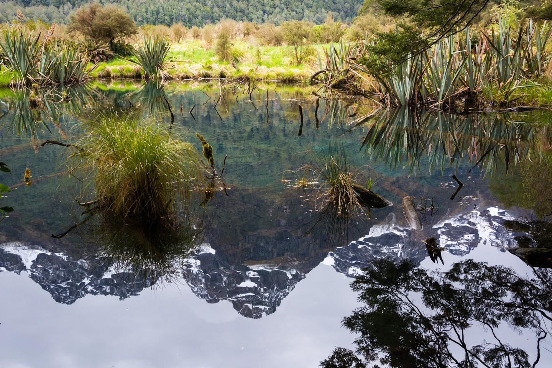 Fiordland – Mirror Lakes
