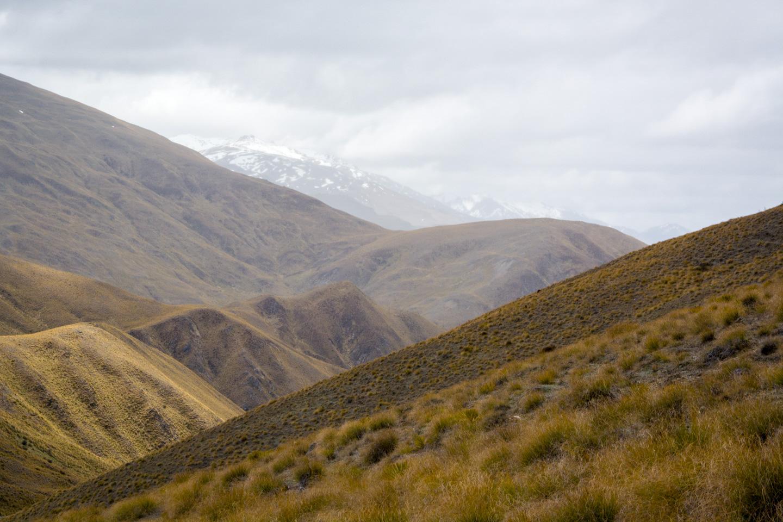 The Crown Range